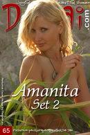 Amanita - Set 2