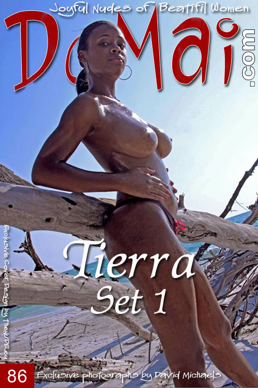 Tierra - `Set 1` - by David Michaels for DOMAI