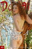 Ginger A - Set 3
