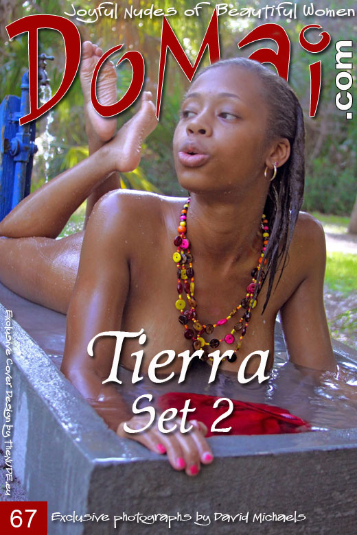 Tierra - `Set 2` - by David Michaels for DOMAI