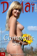 Camomile in Set 2 gallery from DOMAI by Indra