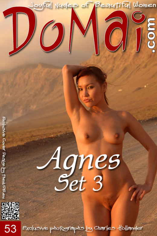 Agnes - `Set 3` - by Charles Hollander for DOMAI