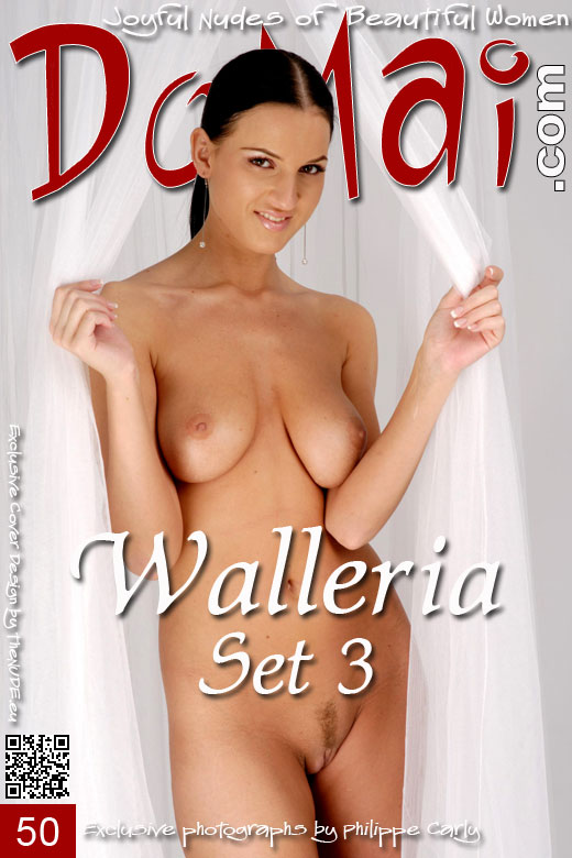 Walleria - `Set 3` - by Philippe Carly for DOMAI
