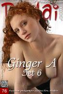 Ginger A - Set 6