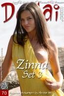 Zinna - Set 3