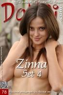 Zinna - Set 4