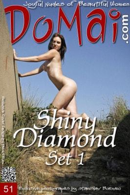 Ingret & Shiny Diamond  from DOMAI