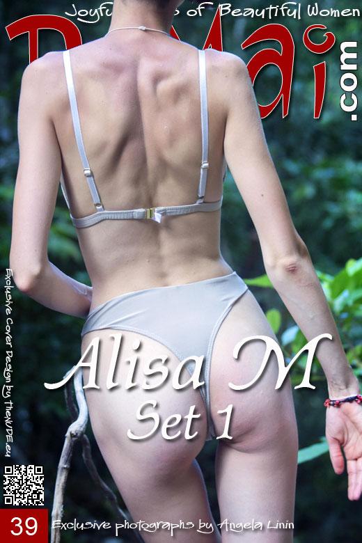Alisa M in Set 1 gallery from DOMAI by Angela Linin