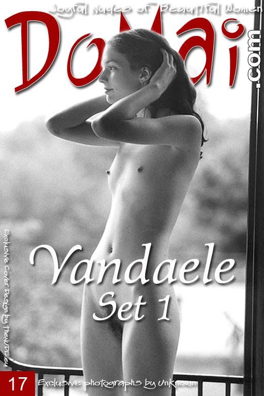 Vandaele - `Set 1` - for DOMAI