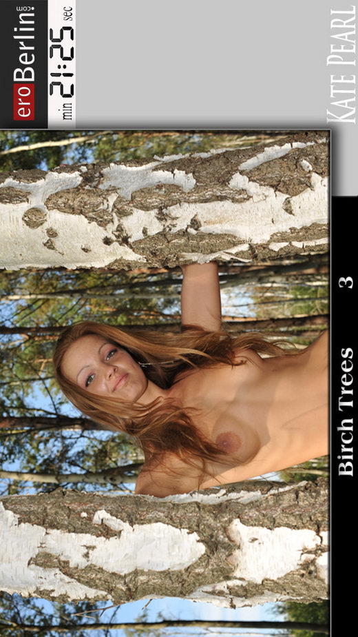 Kate Pearl - `Birch Trees 3` - for EROBERLIN
