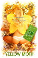 Christina in Yellow Moth gallery from EROTIC-FLOWERS