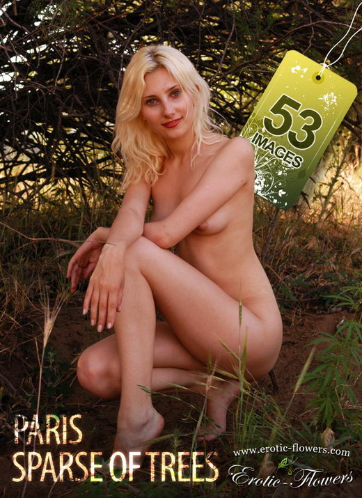Paris - `Sparse of trees` - for EROTIC-FLOWERS