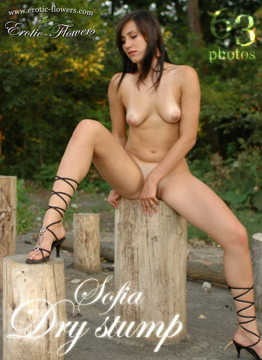 Sofia - `Dry Stump` - for EROTIC-FLOWERS