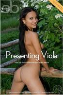 Presenting Viola