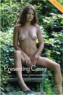 Presenting Casey