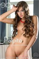 Viva B - Palpito