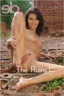 The Ruin 1
