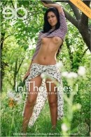 Yulonda - In The Trees 1