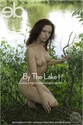 Sonnenfreunde galleries nude nudists vintage magazines