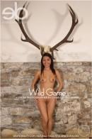 Agnes A - Wild Game