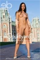 Vik - Courtyard 1