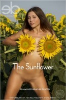 Rimma in The Sunflower gallery from EROTICBEAUTY by Aztek