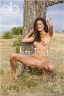 Zara A - Lone Tree 1