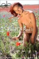 Nastia A in Field Of Red 1 gallery from EROTICBEAUTY by Paramonov