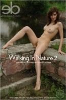 Jini - Walking In Nature 2