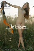 Lady Di in The Harvest gallery from EROTICBEAUTY by Stanislav Borovec