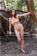 Marjana A - Below The Canopy