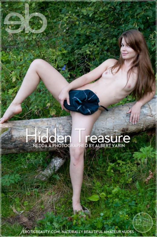 Nedda A in Hidden Treasure gallery from EROTICBEAUTY by Albert Varin