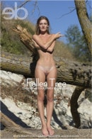 Chova in Fallen Tree gallery from EROTICBEAUTY by Marlene