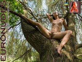 Alina A  from EURONUDES
