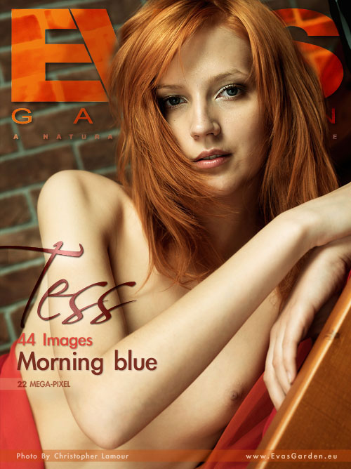Tess - `Morning Blue` - by Christopher Lamour for EVASGARDEN