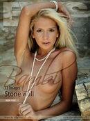 Bambi - Stone Wall
