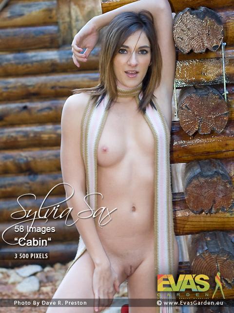 Sylvia Sax - `Cabin` - by Dave R Preston for EVASGARDEN