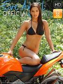 Sexy rider