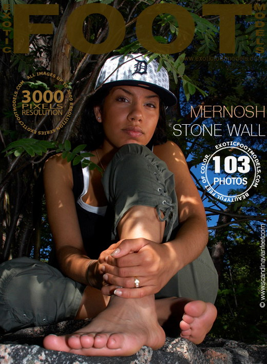 Mernosh - `Stone Wall` - for EXOTICFOOTMODELS