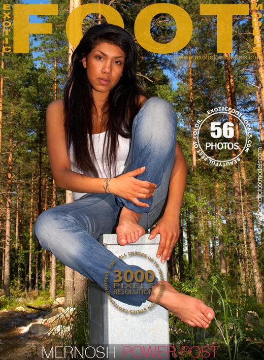 Mernosh - `Power Post` - for EXOTICFOOTMODELS