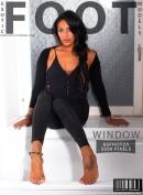 #242 - Window