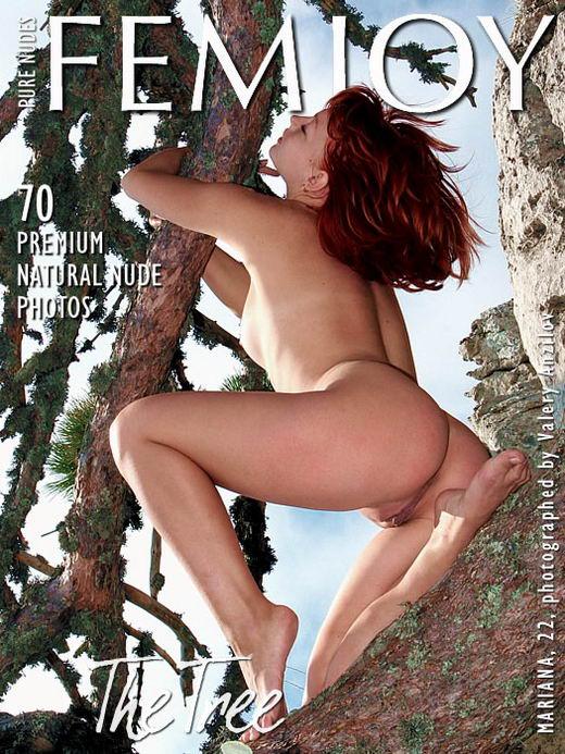 Mariana - `The Tree` - by Valery Anzilov for FEMJOY ARCHIVES