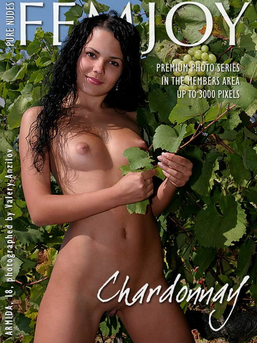 Armida in Chardonnay gallery from FEMJOY ARCHIVES by Valery Anzilov