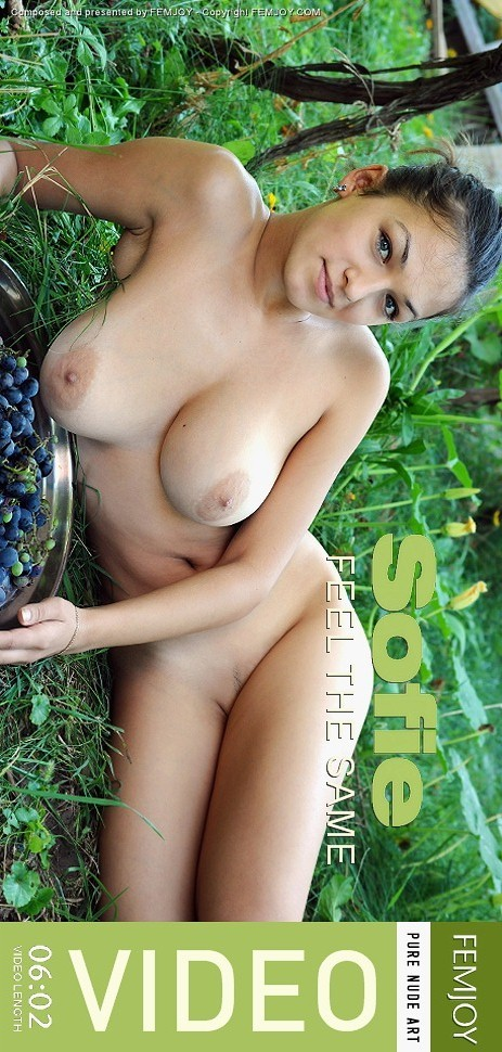 Sofie - `Feel The Same` - by Sven Wildhan for FEMJOY VIDEO