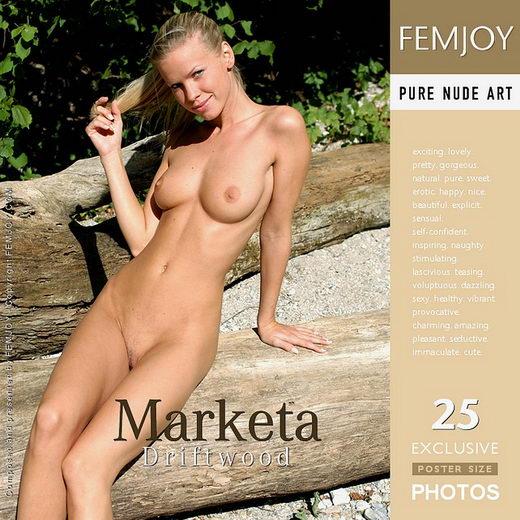 Marketa in Driftwood gallery from FEMJOY by Massimo De Luca