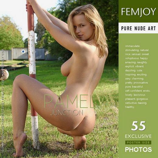 Pamela - `Junction` - for FEMJOY