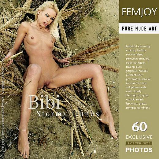 Bibi - `Stormy Dunes` - for FEMJOY