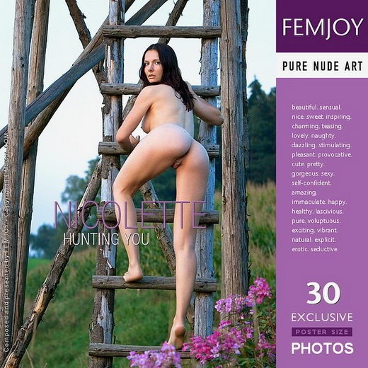 Nicolette - `Hunting You - cover renamed` - by Stefan Soell for FEMJOY