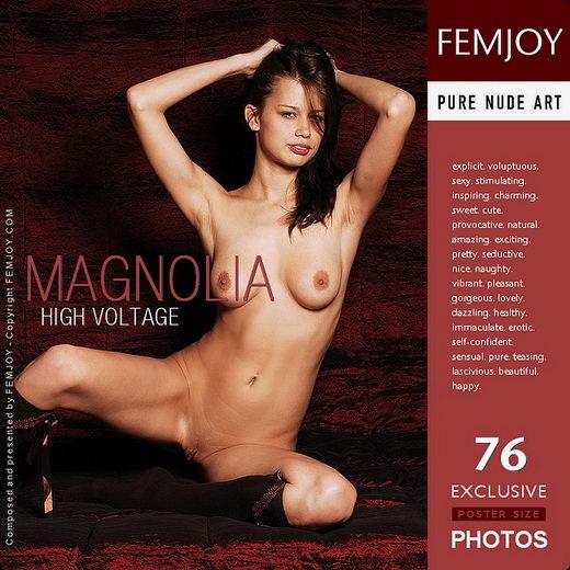Magnolia - `High Voltage` - by Pedro Saudek for FEMJOY