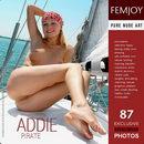 Addie - Pirate